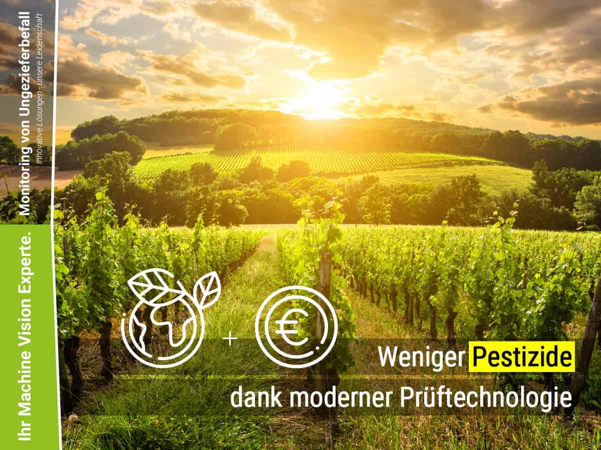 Read more about the article Verminderung des Pestizid Einsatzes durch frühzeitige Erkennung des Kirschessigfliegen-Befalls